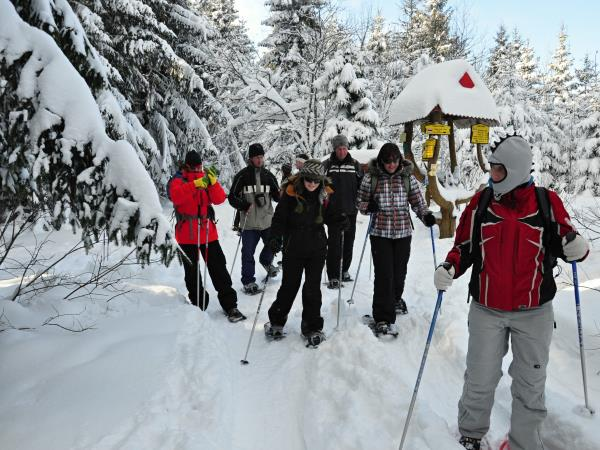 Winter activity vacation krakow and Tatras, Slovakia
