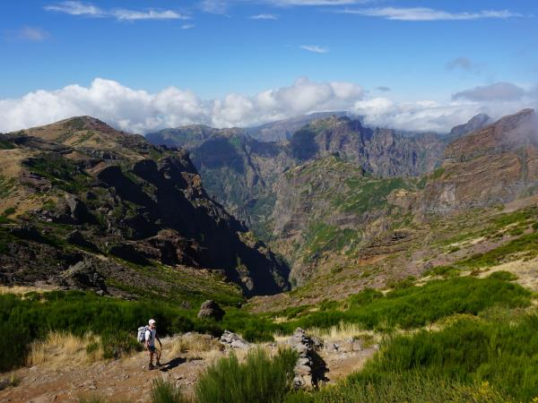 Madeira walking tour, private departure