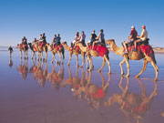 Camel trek in Broome in Western Australia. Photo by Tourism Western Australia