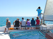 Catamaran cruise at Monkey Mia, Western Australia. Photo by Richard Madden
