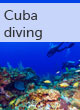 Cuba scuba diving guide