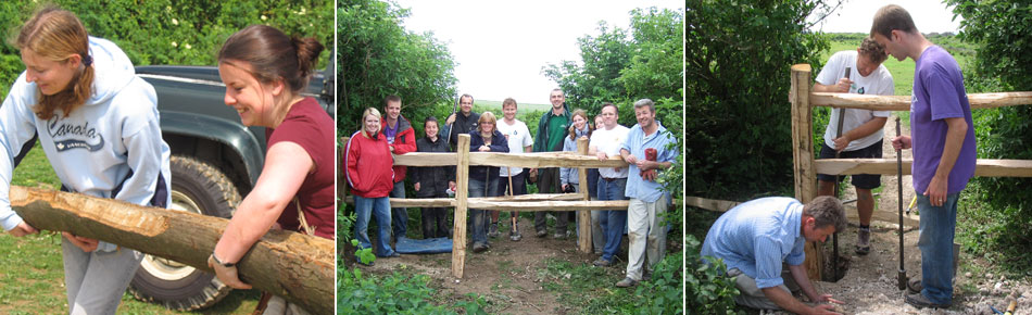Sheepcote volunteer day