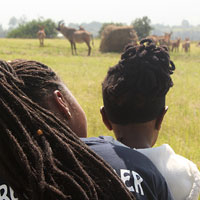 Child watching impala with support staff