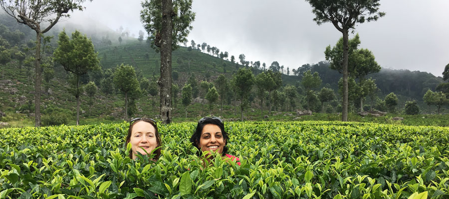 Smita & Victoria in a tea plantation