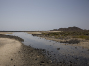 Wetlands on Isla de los Lobos, Fuerteventura. Photo by Nick Haslam