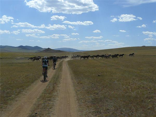 Mongolia cycling vacation