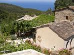 Ikaria Island vacation, organic farmstay villas in Greece