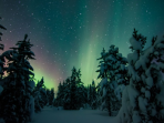 Finnish Lapland Christmas and New Year vacation