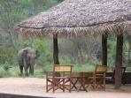 Sri Lanka eco lodge accommodation