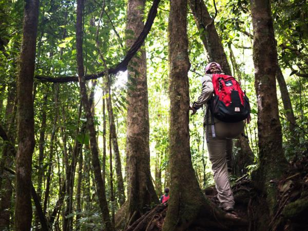 Trekking vacation in Southern Madagascar