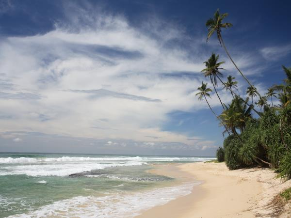 Beach vacation & tour in Sri Lanka