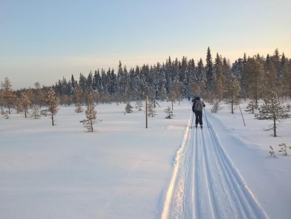 Cross-country skiing vacation in Finland, Russian border