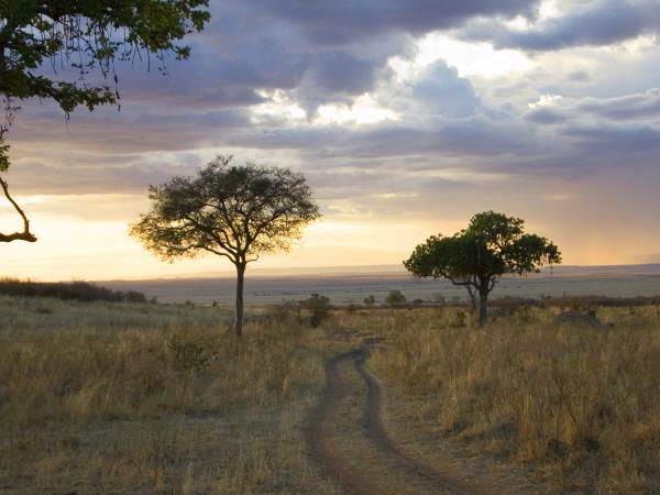 Kenya luxury tour, 8 days