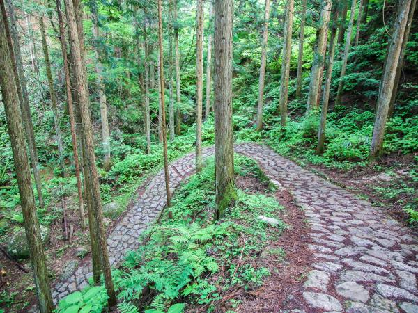 Nakasendo Trail walking tour, Japan