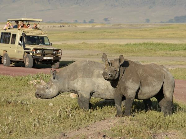 Tanzania national parks wildlife camping safari