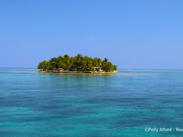 Marine conservation in Belize