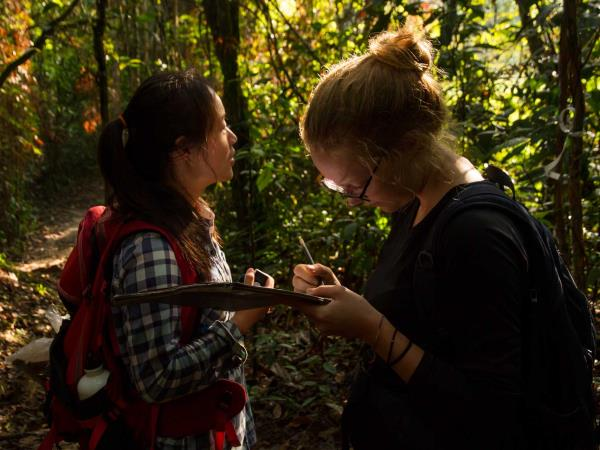 Jungle conservation & research, Peru