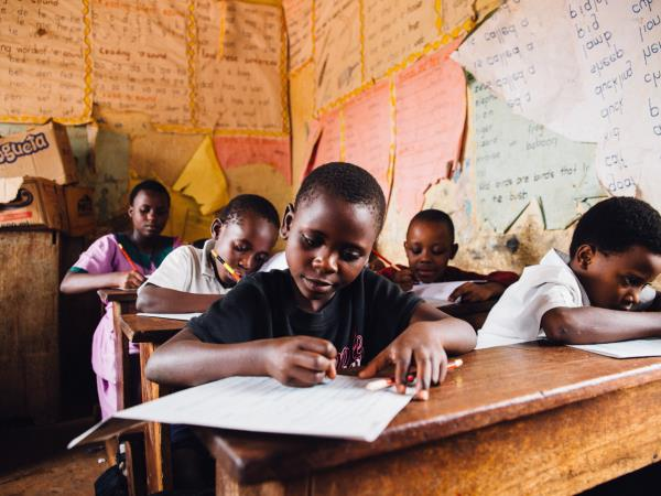 Uganda gorilla safari & local school volunteering