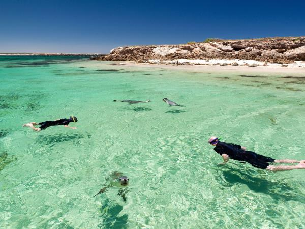 The Great Australian Bight tour, Port Lincoln to Esperance