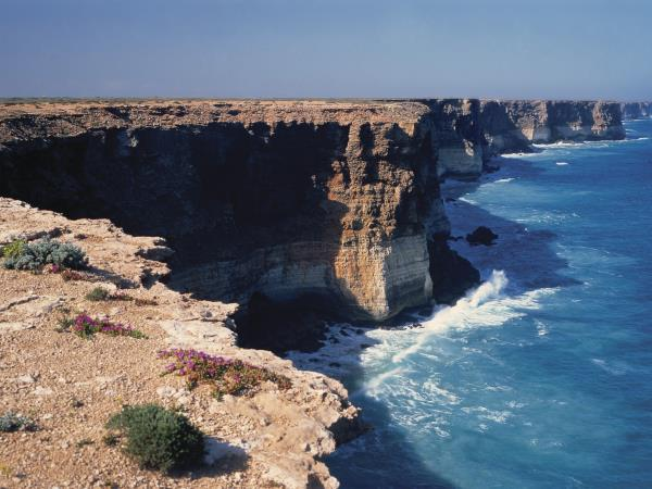 2 day wildlife cruise of Eyre Peninsula, Australia
