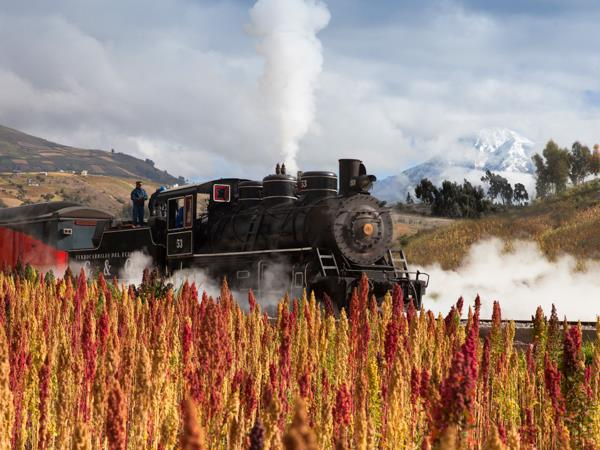 Ecuador railway vacation, culture and nature