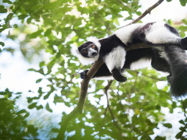 Southern Madagascar photography vacation