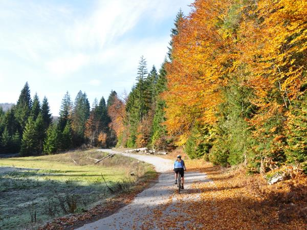 Croatia National parks cycling vacation