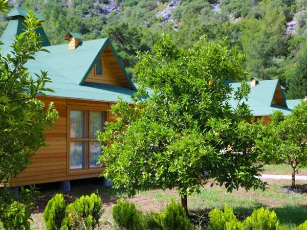 Cirali beach self catering wooden chalets, Turkey