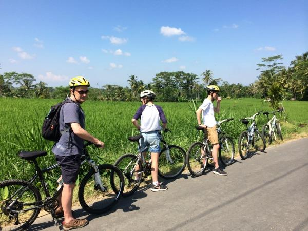 Bali family tour, bikes, boards and beaches