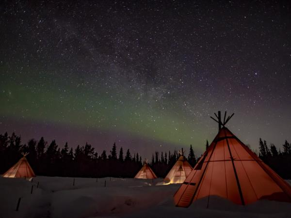 New year northern lights & wildlife vacation, Swedish Lapland