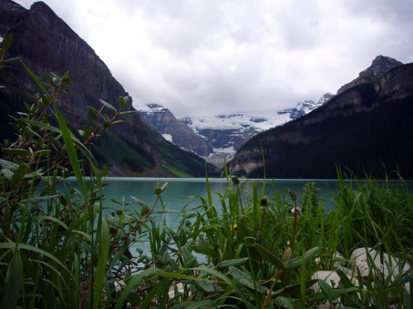 Canada vacation, national parks and wildlife