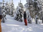 Vacation in Swedish Lapland, tailor made