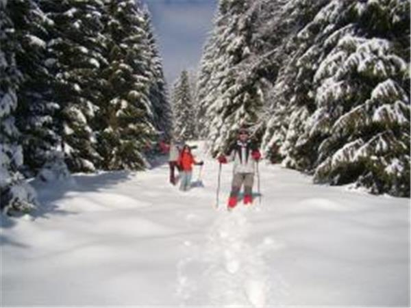 Ski touring vacation in Romania
