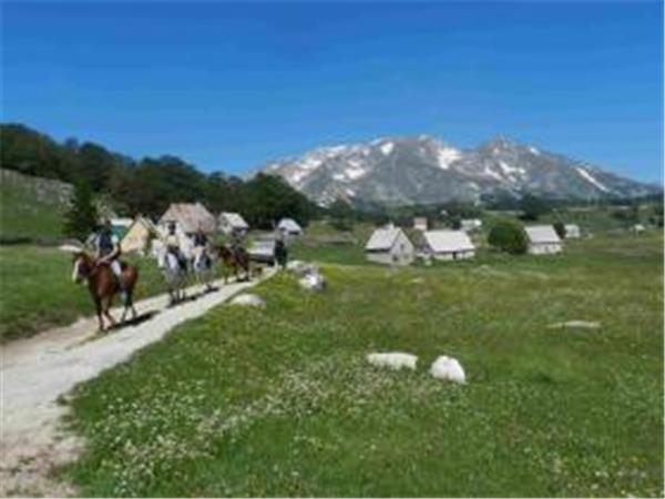 Durmitor horse riding vacation in Montenegro