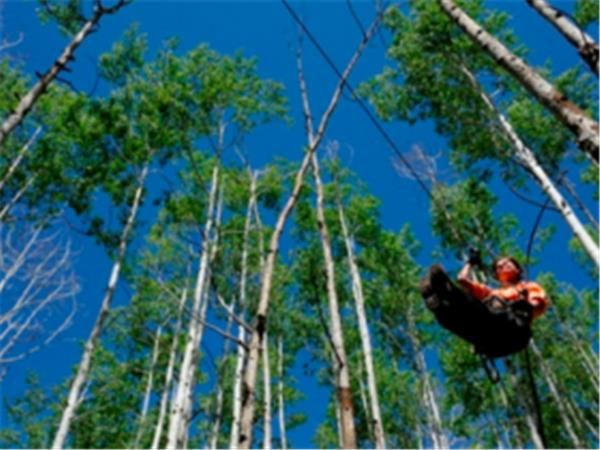 Durango Zip line in Colorado