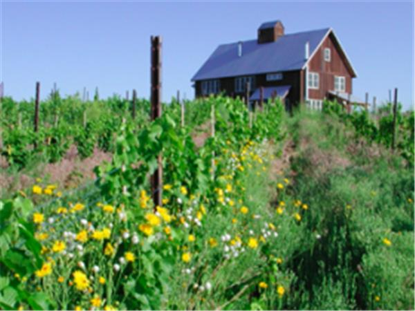 Colorado wine tasting tours, USA