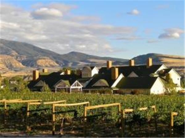 Palisade vineyard hotel in Colorado, USA