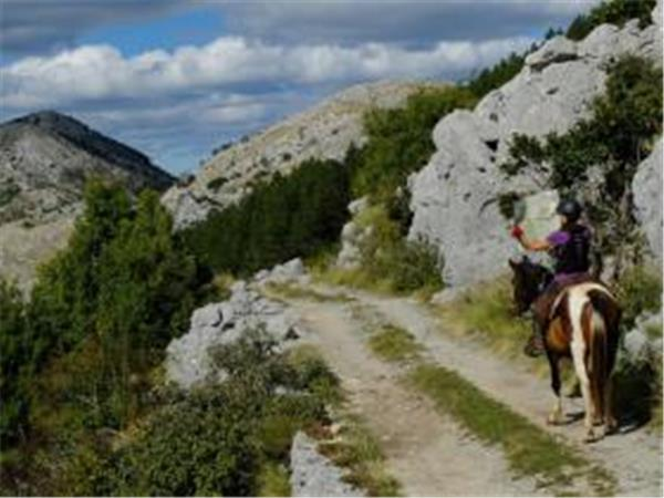 Montenegro horse riding vacation