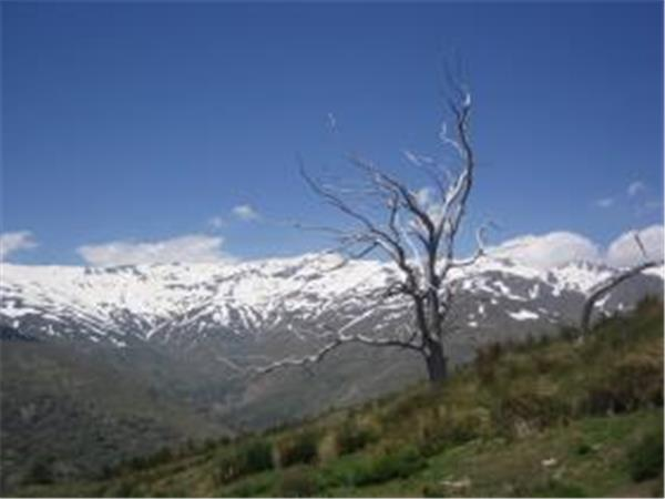 Walking & photography vacation in the Alpujarras, Spain