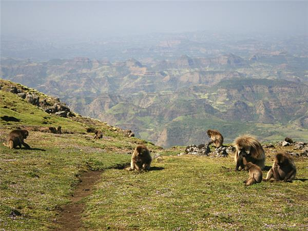 Simien mountains trekking vacation in Ethiopia