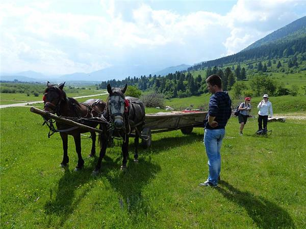 Carpathian Mountains conservation & culture vacation