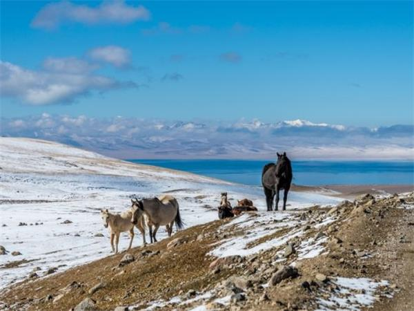 Istanbul to Ulaanbaatar Silk route tour by overland truck