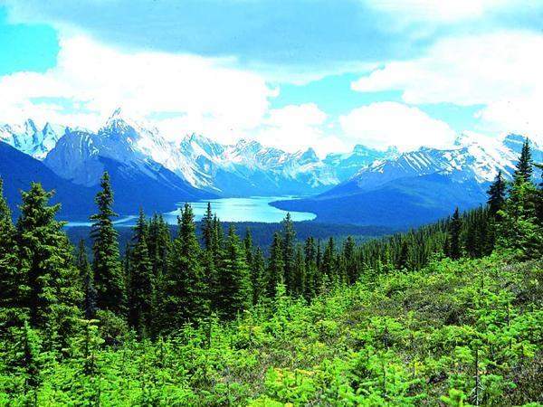 Canadian Rockies adventure vacation