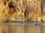 Kayaking in Murray River, South Australia. Photo by South Australia Tourist Board