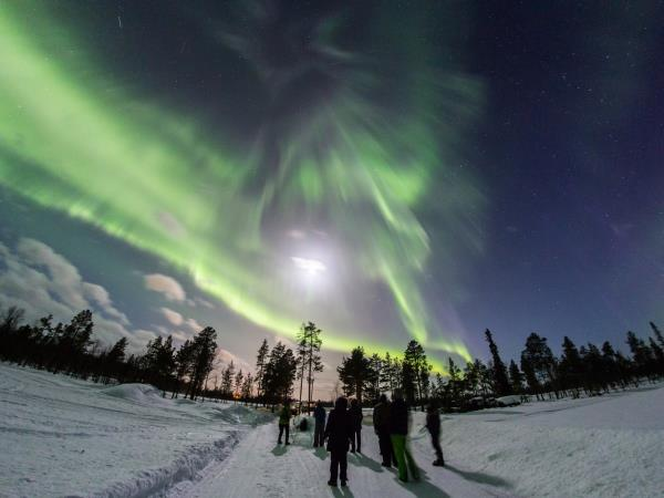 Christmas vacation in Finland, Northern Lights over Lake Inari