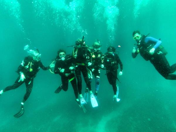 South Africa marine conservation diving vacation