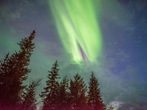 Lapland New Year vacation, Northern Lights