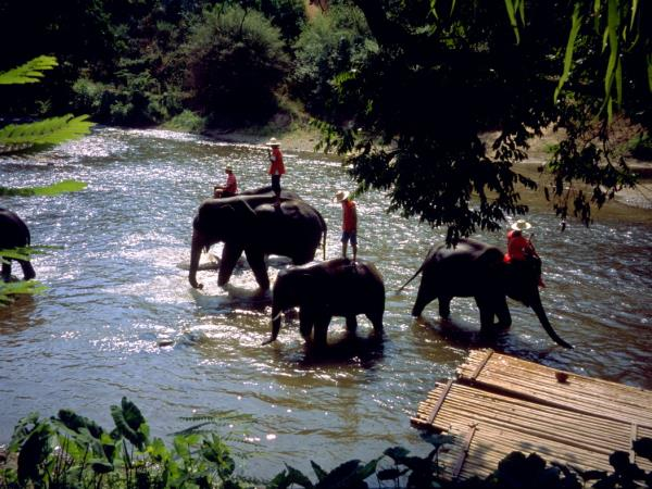 Family adventure vacation in Thailand