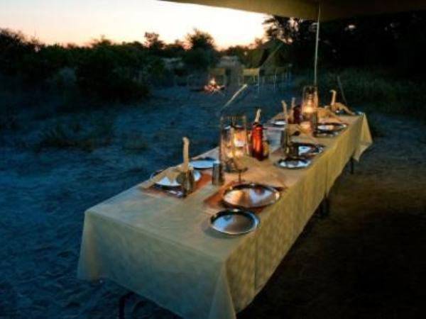 Botswana Great Wilderness journey