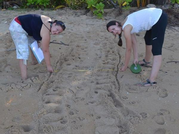 Family volunteering with turtles in Thailand